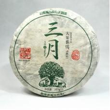 2016 год, Юлэ. Весенний чай, шэн пуэр, блин, ч/ф Фуюань Чан