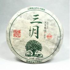 2016 год, Наньно. Весенний чай, шэн пуэр, блин, ч/ф Фуюань Чан