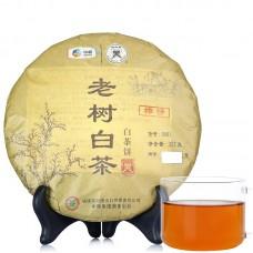 2015, Старые деревья, 357 г/блин, белый чай, ч/ф Чжунча