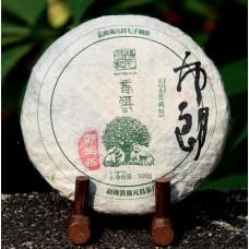 2014, Дикоросы Буланшаня, 100 г/блин, шэн, ч/ф Фуюань Чан