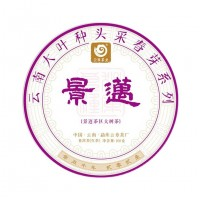 2021, дер. Цзинмай (景迈), весенние почки, 100 г/блин, шэн, ч/ф Юньчжан